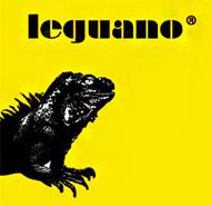 носки с подошвой leguano